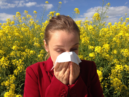 Summer Season Wellness: 4 Natural Ways to Beat Seasonal Allergies
