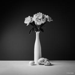 Flower #7