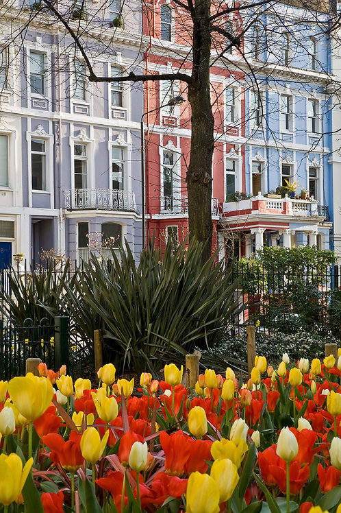 Colourful Colville Square