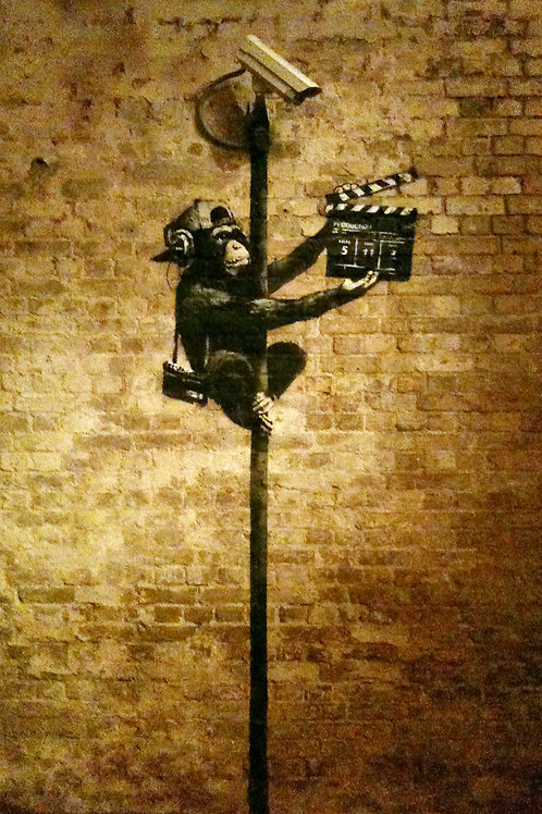 Banksy Movie Monkey