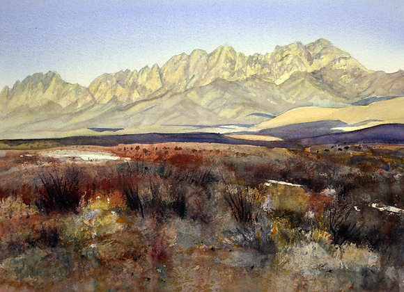 Afternoon Light, Organ Mountains