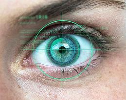 Iris_identification_teaser_750x600.jpeg