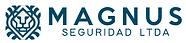Magnus Seguridad.png