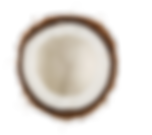 coconut-png-18.png