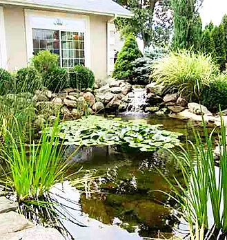 Landscape Secret garden with pond