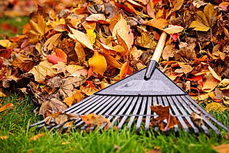 spring and fall lawn cleanup
