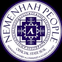 seal-blue-insignia-nem-2018-2.png