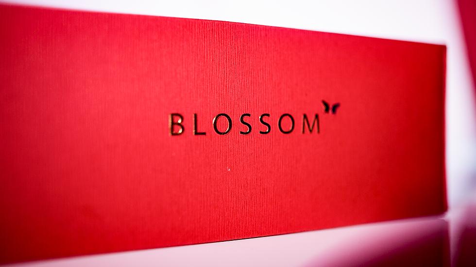 Alchemist: Blossom Sensitive by Will Tsai