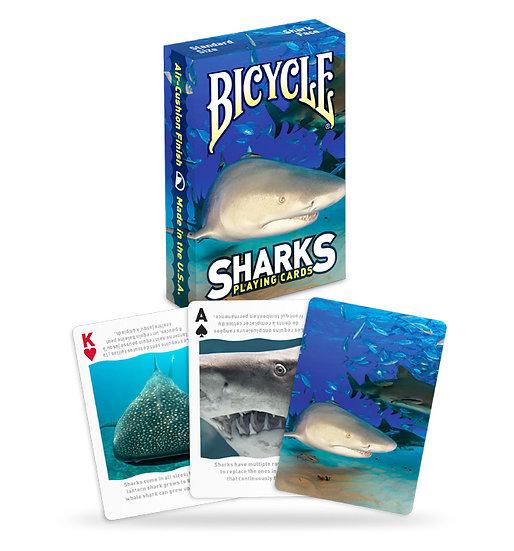*Bicycle - Sharks