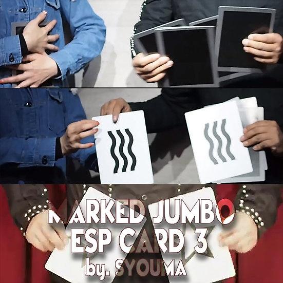 *Marked Jumbo ESP Card3 by Syouma