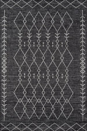 VI-08 Indoor/Outdoor Rug
