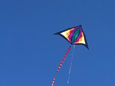 Large Delta Kite.jpg