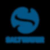 Saltwater Logo-01.png