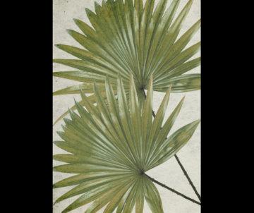 Exotic Floor Mat 041046