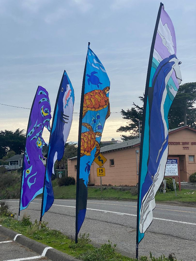 Feather Banners 1.jpg