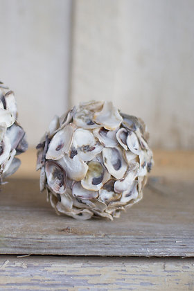 Set of four oyster shell spheres