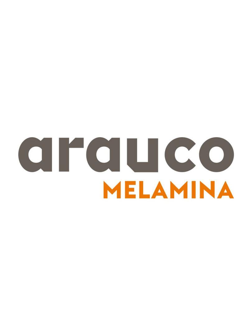 arauco-strategic-design-pedro-franco.jpg