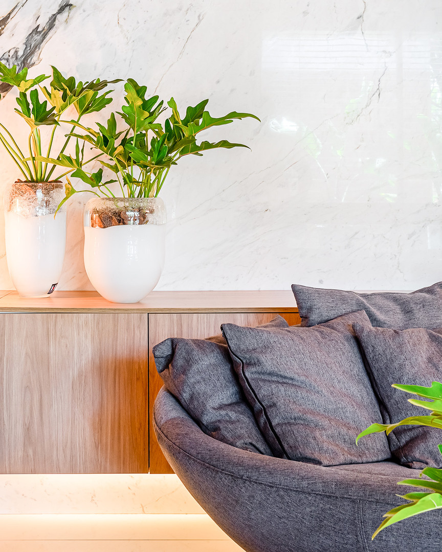 projeto-claudia-castello-branco-arq-sofa