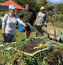 Composting 1.jpeg