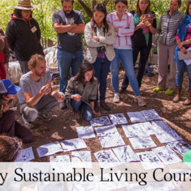 Spring Sustainable Living Course