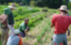 Learning Organic Growing.JPG