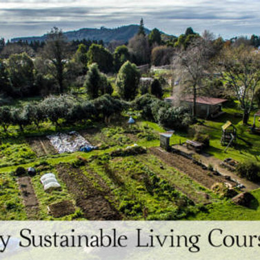 Sustainable Living Course Autumn 2020
