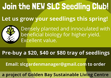 Seedling Club Ad 8.5 x 6 (1).png