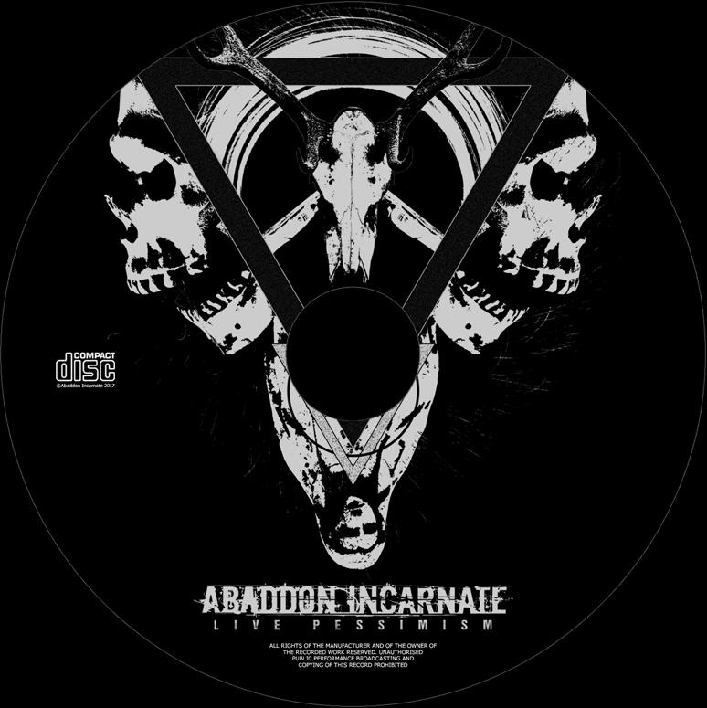 AI LP (Disc Image)