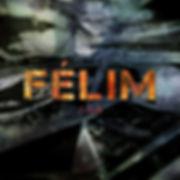 Felim ABS cover.jpg