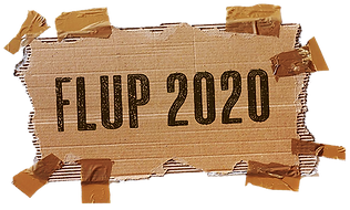 BOX FLUP 2020_P.png