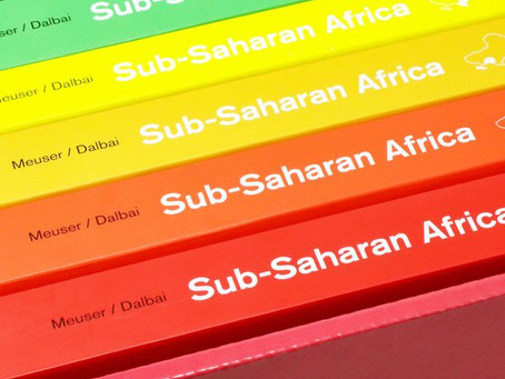 Manful and Gallagher contribute to 'Architectural Guide to Sub-Saharan Architecture'