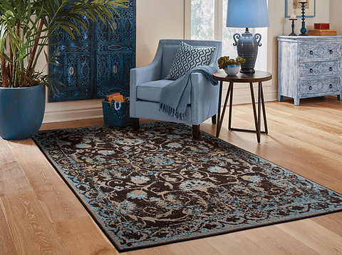 Traditional Distressed Area Rugs Living Room, Black