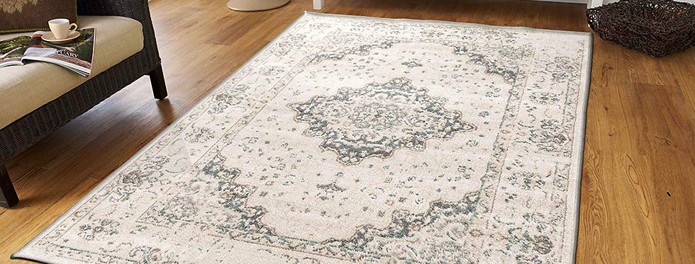 Traditional Distressed Area Rugs Living Room, Ivory