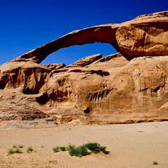 desert bridge