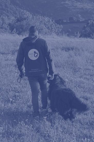educador-canino-oso