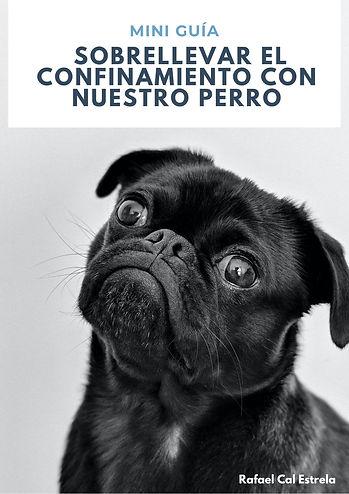 Guía_confinamiento.jpg