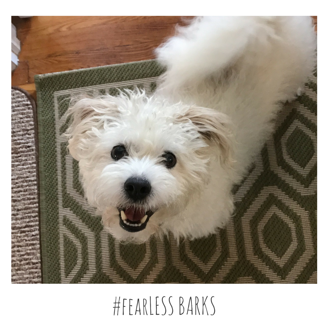 #fearLESS BARKS 9