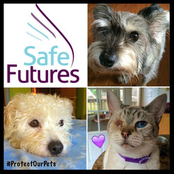 Protect Our Pets Safe Futures