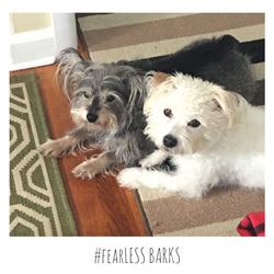 #fearLESS BARKS 4