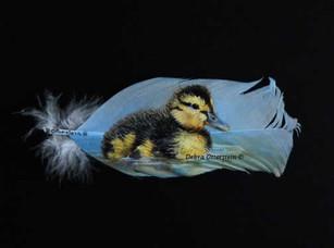 Mallard Chick  $ 225