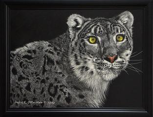 Snow Leopard  $ 695