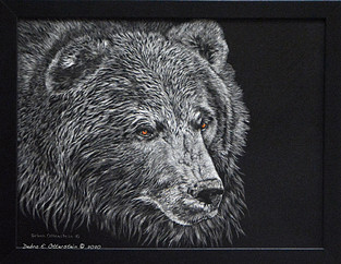 Grizzly  $ 495