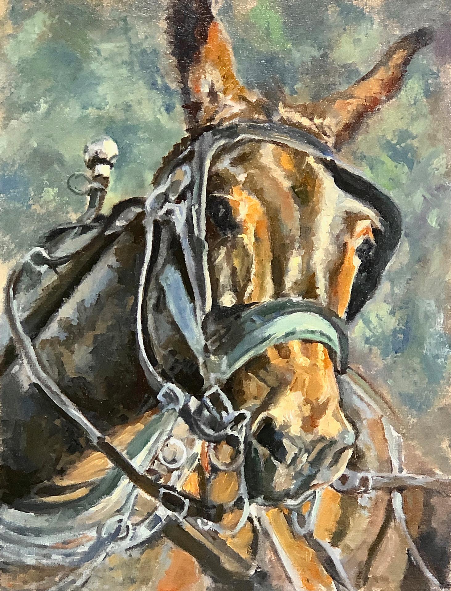 Mule Pivot   $ 425