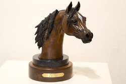 Magesty     $1,500