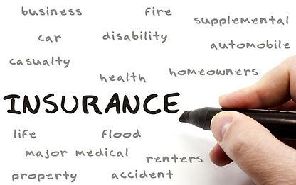 Insurance Business, car, home, disability, health, supplemental, life, flood, farm, ranch, livestock