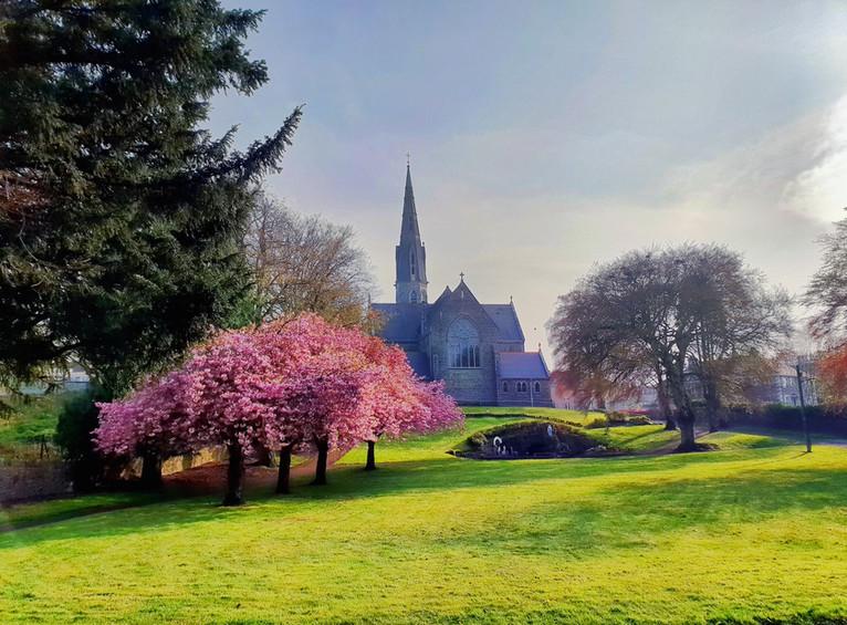 St. Patrick's Lawns