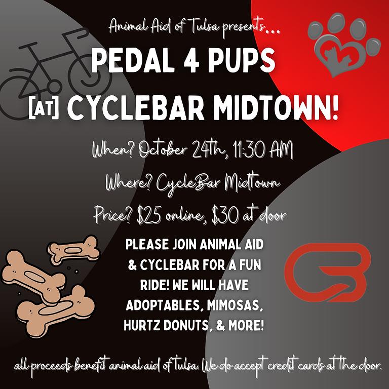 Pedal 4 Pups @ Cyclebar Midtown