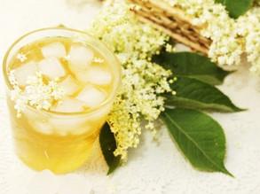 Sciroppo di fiori di sambuco: la ricetta della nostra nonna