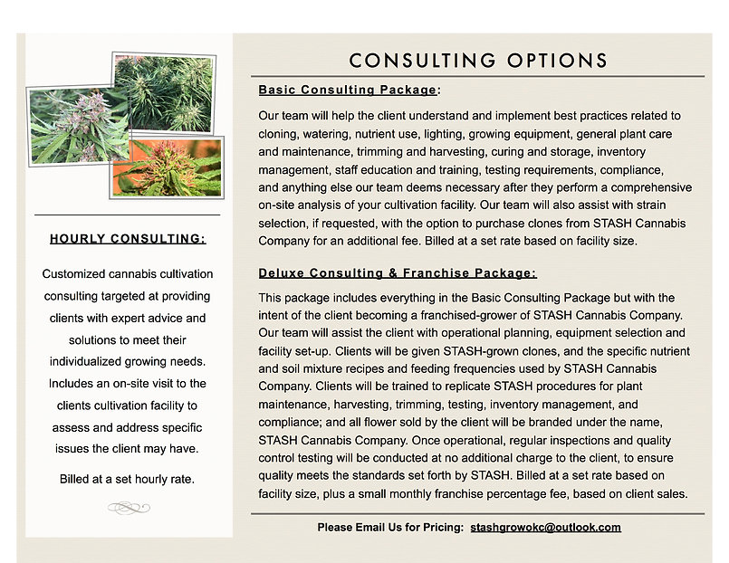 STASH Grow Consulting Flyer.Page 2.jpg
