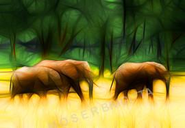 Expp_1_Moser_3 Elefanten.jpg
